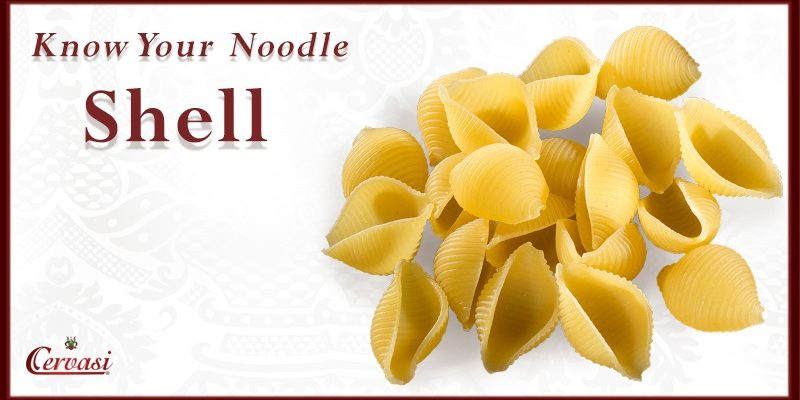 "Uncooked shell pasta with caption ""know your noodle"""